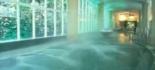 自家源泉の温泉